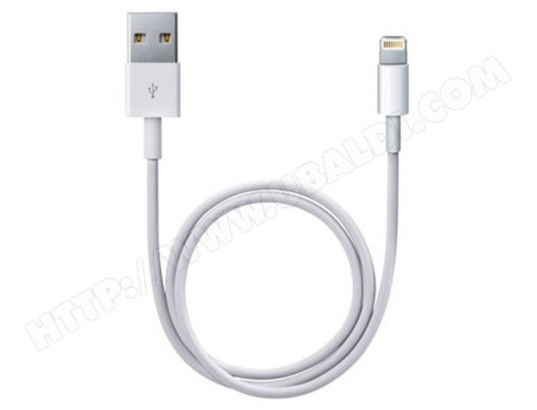 Câble Lightning USB (1m) APPLE MD819