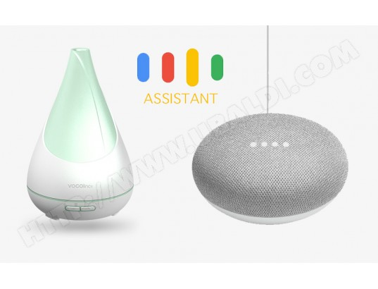 Enceinte Connectée Intelligente GOOGLE Pack FlowerBud Smart Diffuser + Google mini