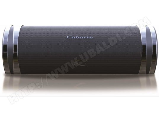 Enceinte bluetooth CABASSE SWELL Noire