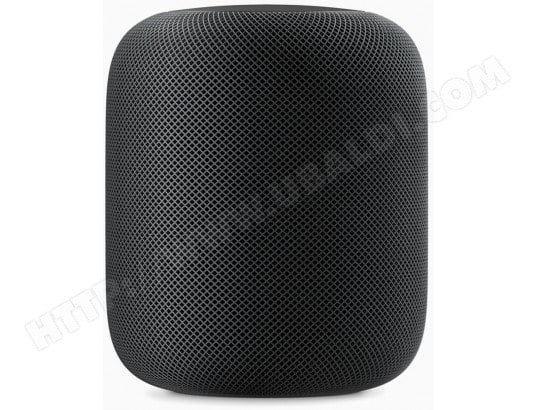 Enceinte Connectée Intelligente APPLE HomePod (Gris Sidéral)